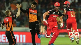 SRH topple RCB causing a huge boost to their playoff chances